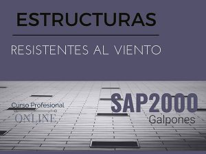 Galpones SAP2000